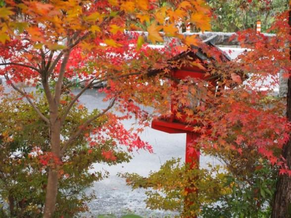 鍬山神社 入口付近