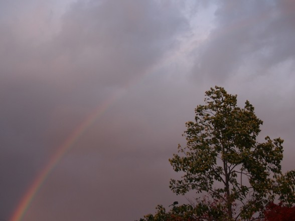 鍬山神社 上空の虹