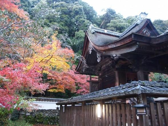秋の鍬山神社