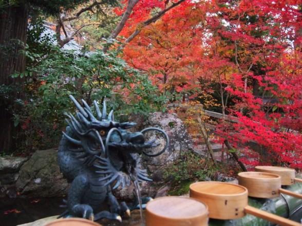 鍬山神社 水汲み場の龍