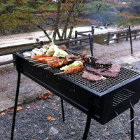 亀岡市七谷川でゆったりバーベキュー【グリーンライフのコンロを使用】