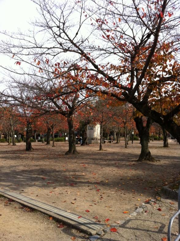 円山公園 園内