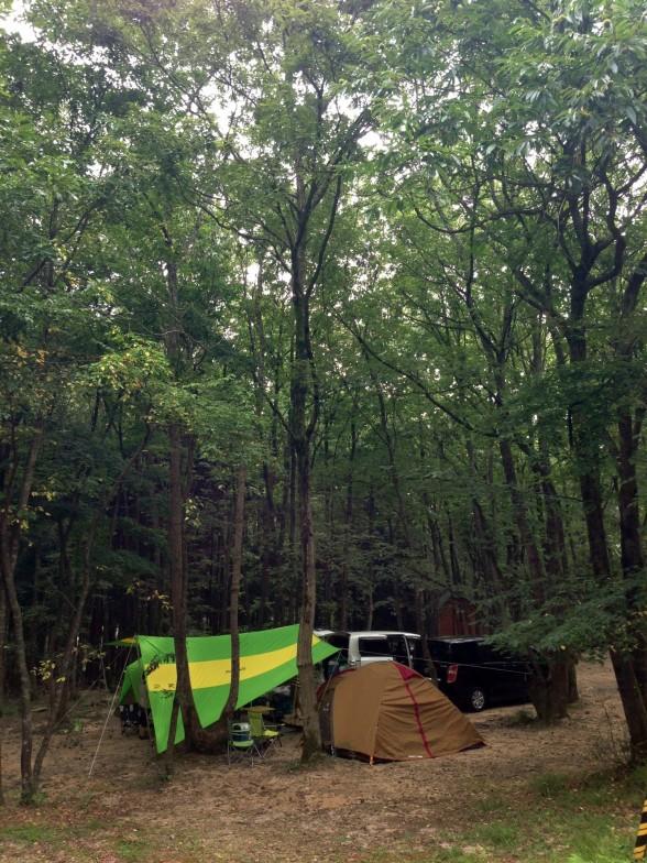 奥琵琶湖キャンプ場 林間サイト
