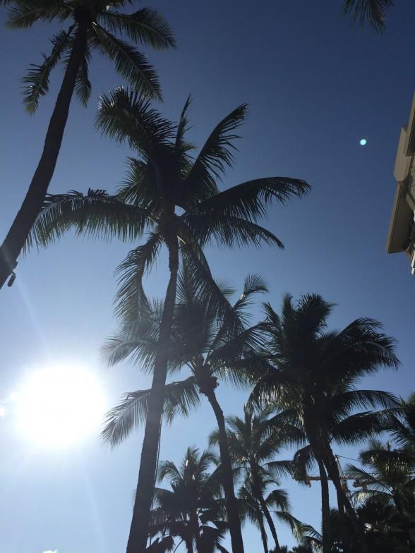 子供連れハワイ旅行5日目【ワイラナ・コーヒー・ハウスで朝食、帰宅】