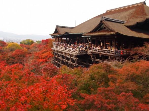 京都の観光スポット写真・画像ギャラリー(季節・地名別)